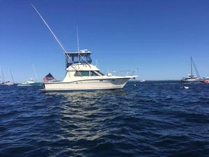 Used Hatteras 36 Convertible Sportfish Convertible Fishing Boat For Sale