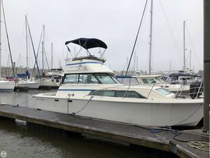 Used Chris-Craft 310 Catalina Sports Fishing Boat For Sale