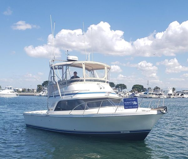 Used Blackfin 33 Convertible Fishing Boat For Sale