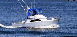 Used Blackman Sportfisher Cruiser Boat For Sale