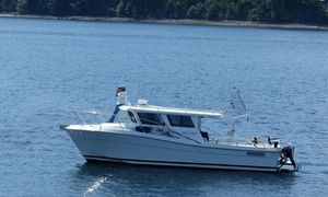 Used Ocean Sport Roamer 33' #55 Express Cruiser Boat For Sale