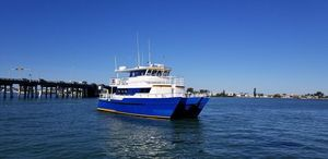 Used Custom TRI Kat 49 Passenger Catamaran Commercial Boat For Sale