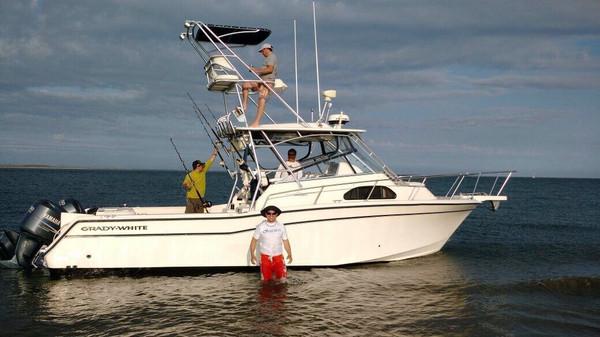Used Gradywhite Marlin 300 Cuddy Cabin Boat For Sale