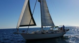 Used Island Packet 37 Cutter Rig Sloop Cruiser Sailboat For Sale