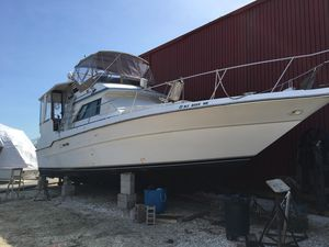 Used Sea Ray 440 Aft Cabin Motor Yacht Motor Yacht For Sale