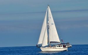 Used Shannon 38 Pilot House Cutter Cruiser Boat For Sale