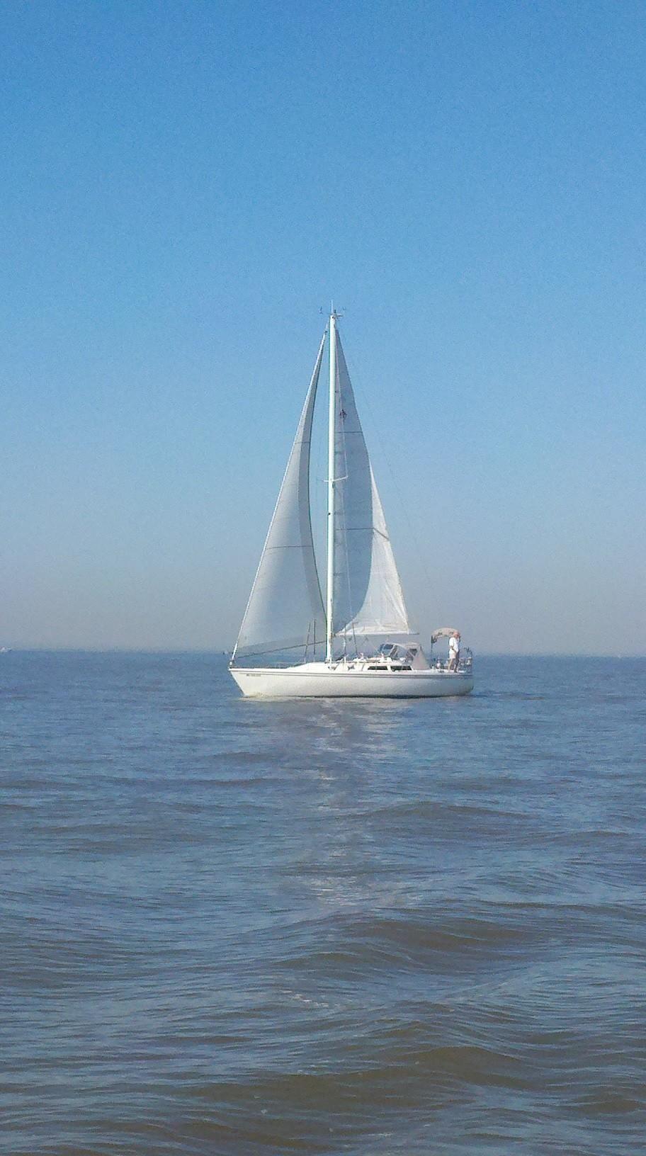 1988 Used Catalina 36 Tall Rig Wing Keel Cruiser Sailboat