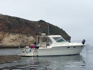 Used Tiara 3600 Open Express Cruiser Boat For Sale