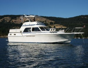 Used Uniflite 42' Double Cabin Aft Cabin Boat For Sale