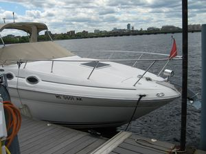 Used Sea Ray 260 Express Cruiser Boat For Sale