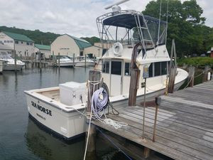 Used Henriques 35 Saltwater Fishing Boat For Sale
