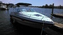Used Chaparrel 235 Cuddy Cabin Boat For Sale