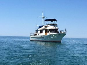 Used Marine Trader 34 Aft Cabin Trawler Boat For Sale
