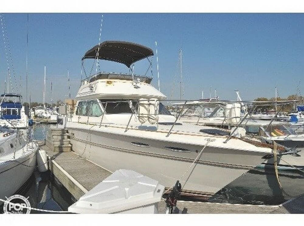 Used Sea Ray 36 Aft Cabin Aft Cabin Boat For Sale