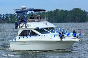 Used Sea Ray 300 Sedan Bridge Flybridge Boat For Sale