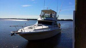 Used Sea Ray 430 Sedan Bridge Convertible Fishing Boat For Sale