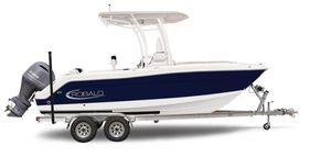 New Robalo R222ex Center Console Fishing Boat For Sale
