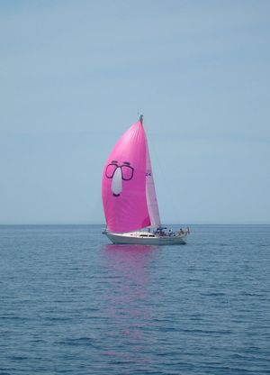 Used C&c 37 Sloop Sailboat For Sale
