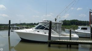 Used Cabo 31 Express31 Express Saltwater Fishing Boat For Sale