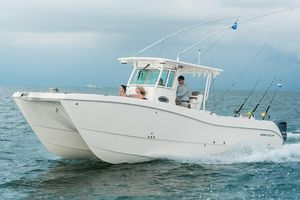 New World Cat 320 CC Power Catamaran Boat For Sale