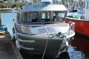 Used Armstrong Marine 24' Monohull Cuddy Cabin Boat For Sale