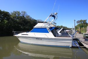 Used Sea Ray 390 Sedan Sportfish Flybridge Boat For Sale