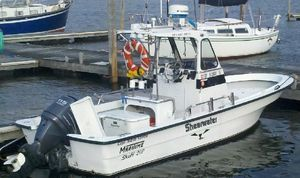 Used Maritime 20 Pioneer Center Console Fishing Boat For Sale
