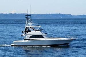 Used Bertram 50 Convertible Motor Yacht For Sale