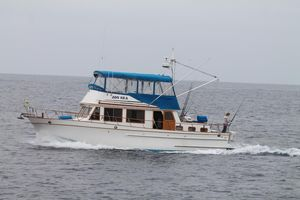Used Trawler 41 Trawler Boat For Sale