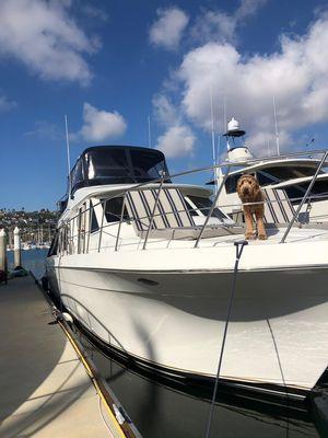 Used Navigator 5300 Cruiser Boat For Sale