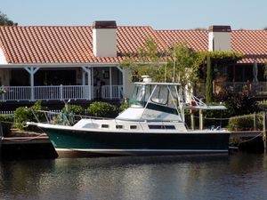 New Albin 32' Command Bridge Motor Yacht For Sale