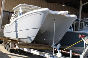 New World Cat 296 DC Cruiser Boat For Sale