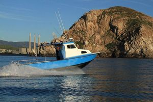 Used Anderson 26 Dive Boat For Sale