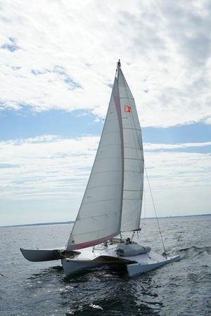 Used Newick Trimaran Sailboat For Sale