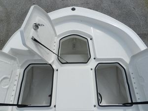 New Bayliner F21 Center Console Fishing Boat For Sale