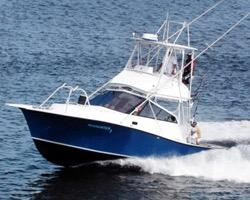 Used Newton 32 Convertible Sports Fishing Boat For Sale