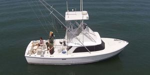 Used Bertram Flybridge Boat For Sale