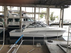 New Cabo Express Cruiser Boat For Sale