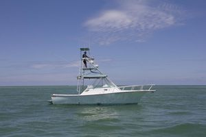Used Shamrock 31 Grand Slam Express Cruiser Boat For Sale