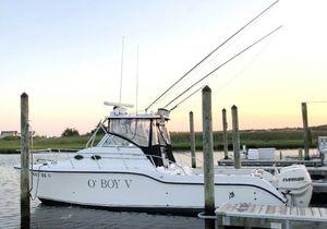 Used Baha Cruisers 296 King Cat Catamaran Boat For Sale