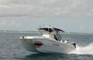 """Used Prowler """"24"""" 246 Center Console Center Console Fishing Boat For Sale"""