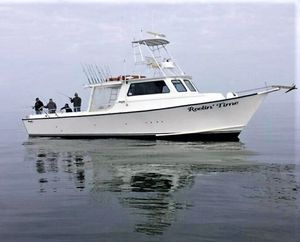 Used Chesapeake 46 Deadrise Sports Fishing Boat For Sale