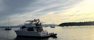 Used Bayliner 5288 Pilot House Motoryacht Motor Yacht For Sale
