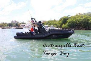 New Dgs Monster 30 Cruiser Boat For Sale