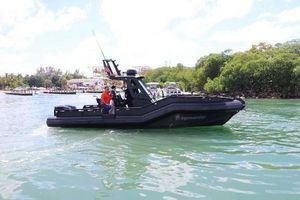 New Dgs Monster 30 Monster Cruiser Boat For Sale