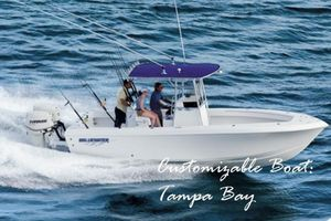 New Bluewater Sportfishing 23t Saltwater Fishing Boat For Sale