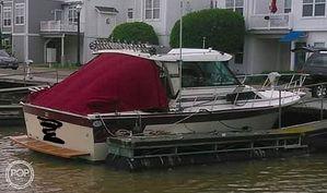 Used Baha Cruisers 310 Sport Fisherman Sports Fishing Boat For Sale
