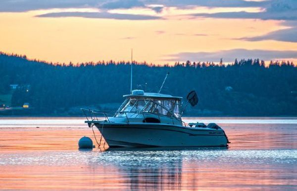 Used Grady-White Marlin Sports Fishing Boat For Sale