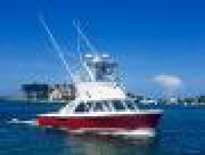 Used Bertram 31 Sportfisher Sports Fishing Boat For Sale
