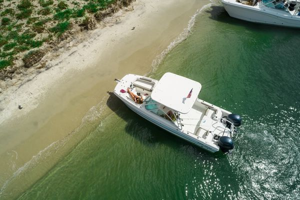 New World Cat 230 DC Dual Console Boat For Sale